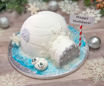 Sugar Rush Netflix Mini Igloo Cake By Sweet Traders